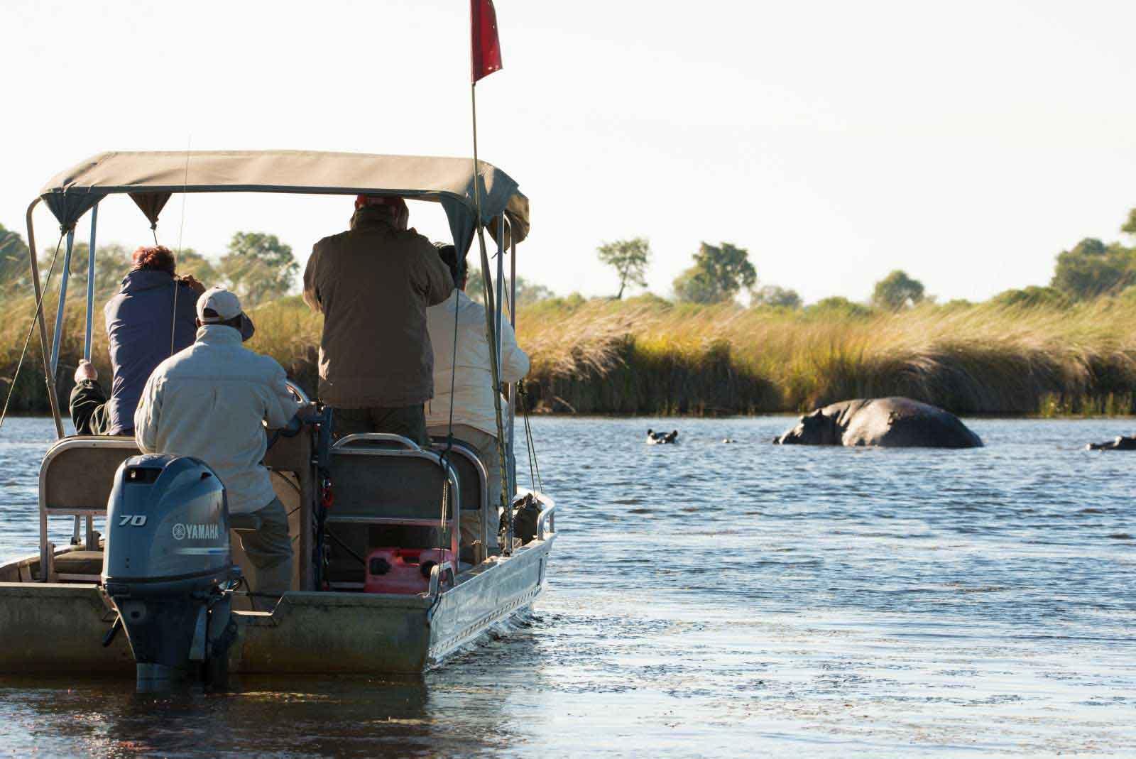 Xobega island camp hippos - Botswana