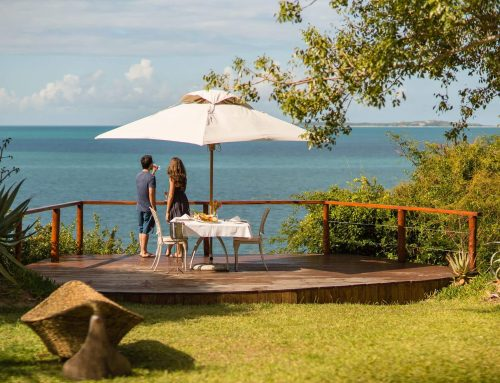 Ludivine & Thibaut: a South African honeymoon